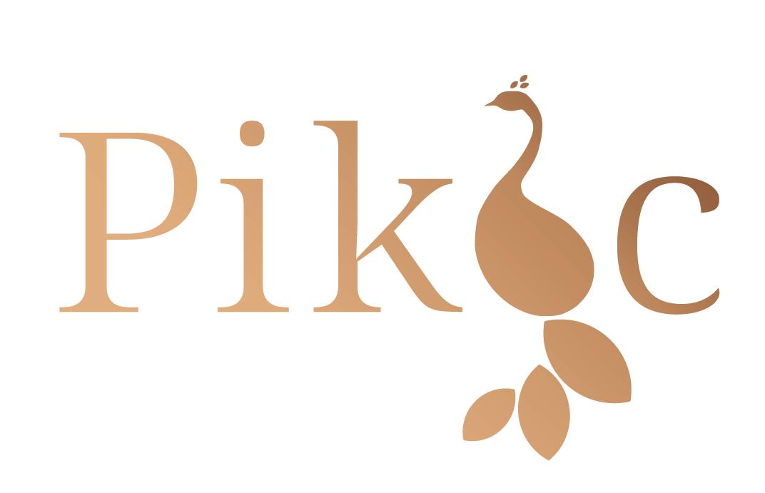 Logo pikoc final