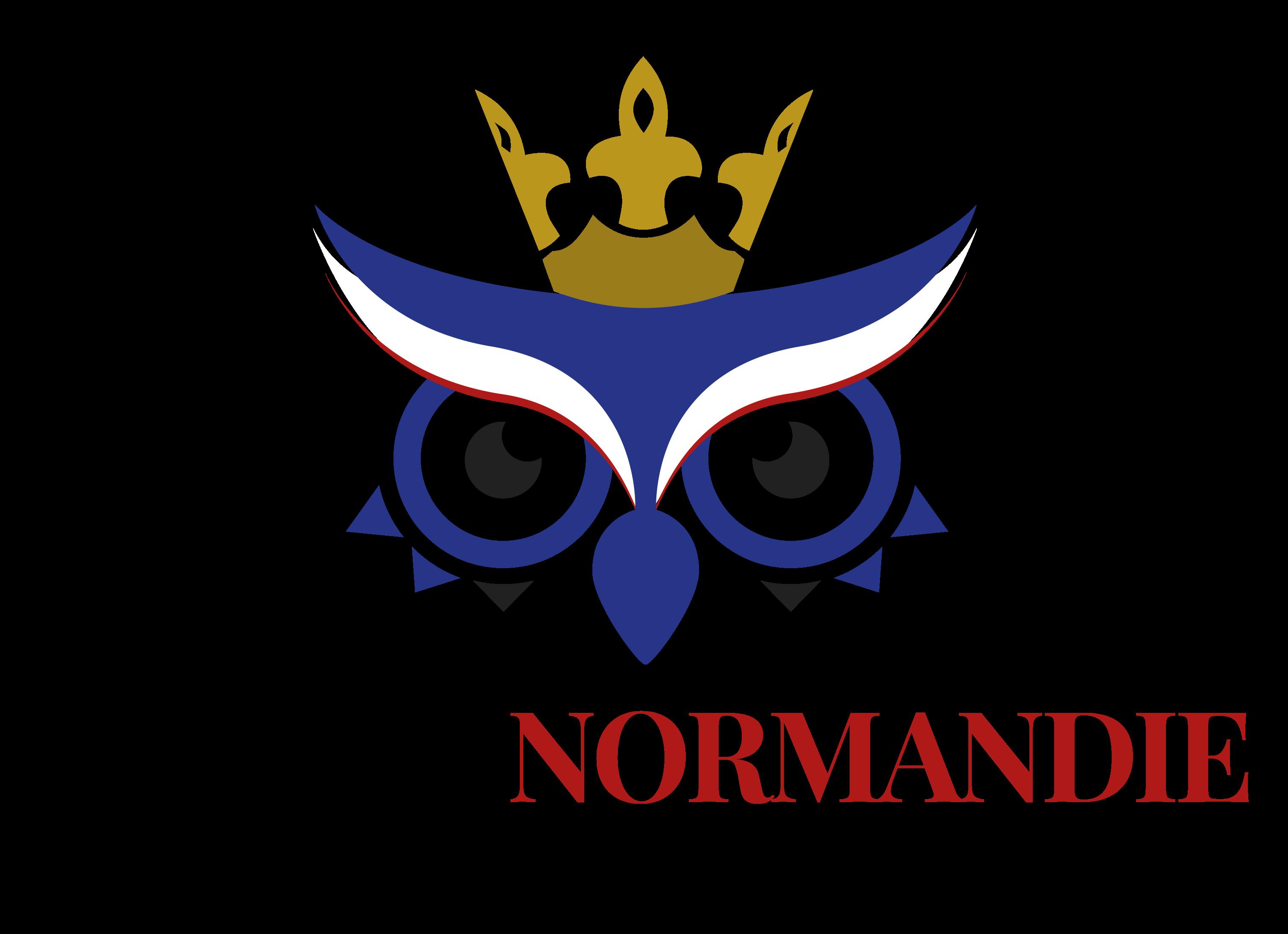 Logo duc de normandie v3 plan de travail 1 copie 11