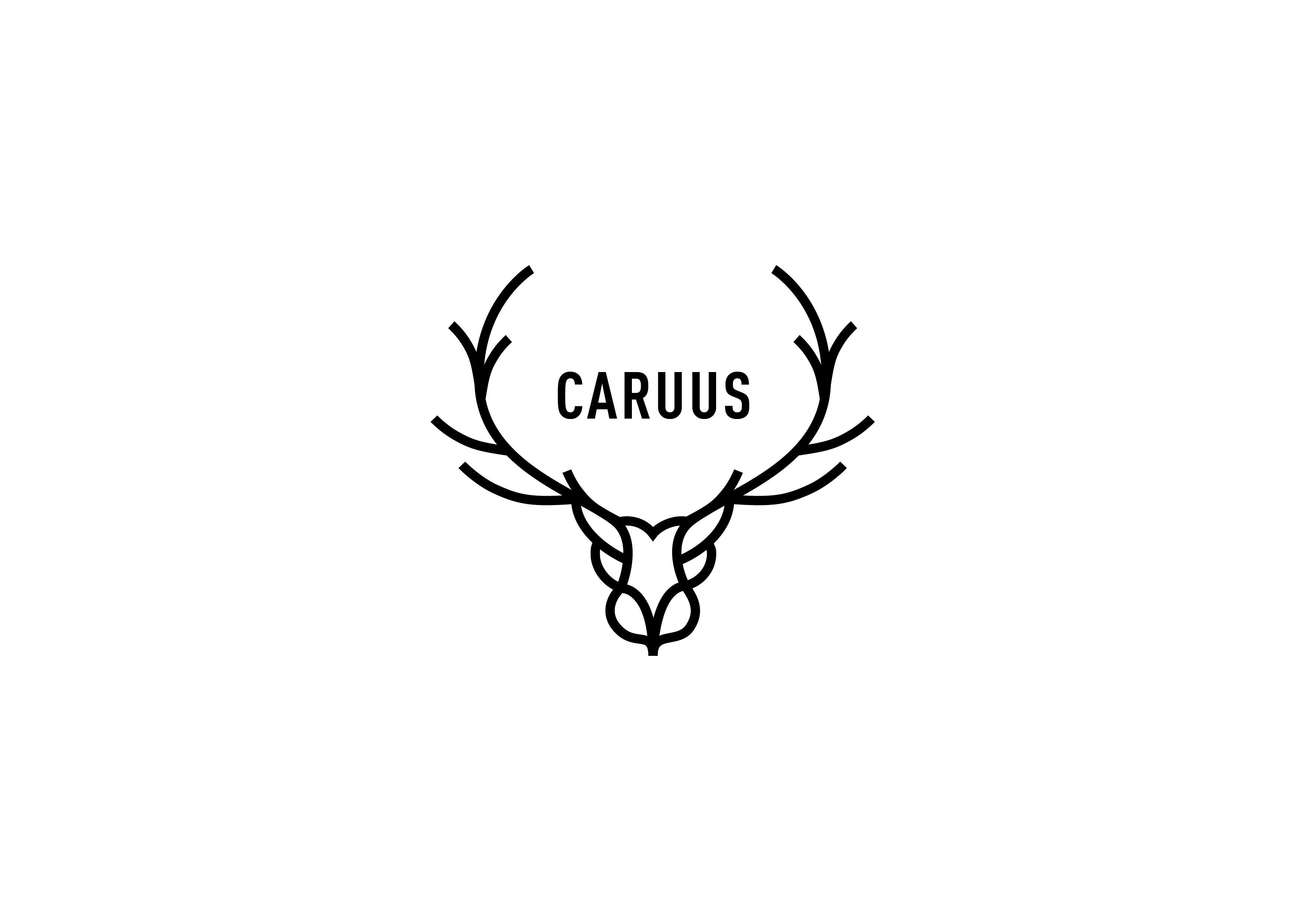 Caruus