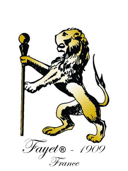 Logo fayet