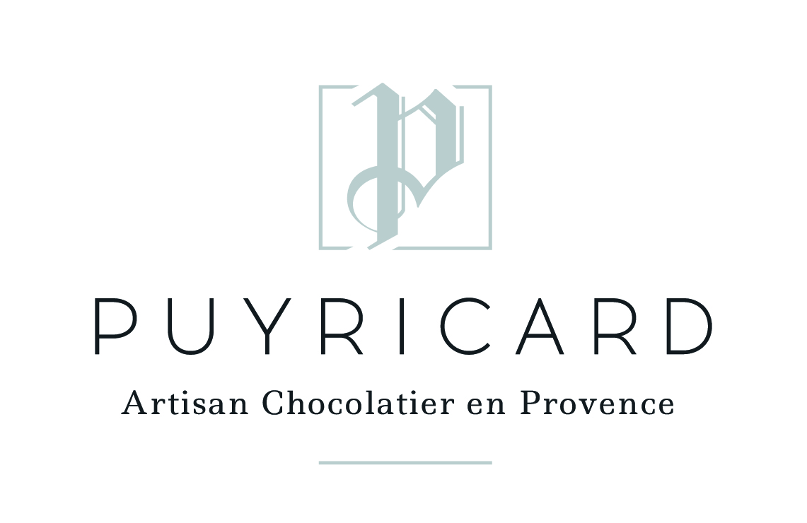 Logofondblanc puyricard vp1 23112016 04 04