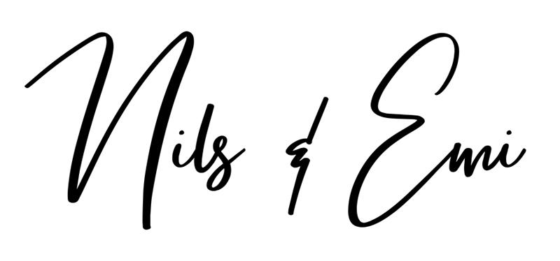 Nilsemi logo