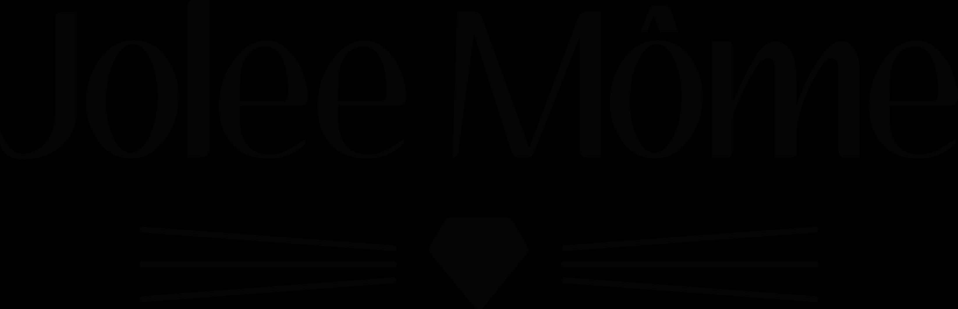 Logo joleemomenoir