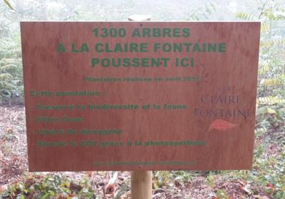Small panneau plantation