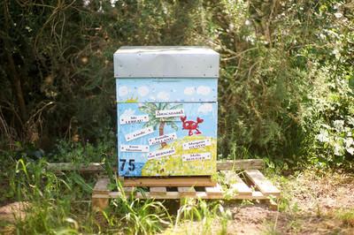 Small ruche   le rucher du champoivre   cr dit aureliestapf