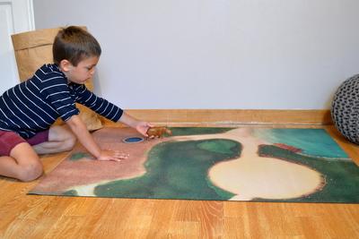 Small carpeto