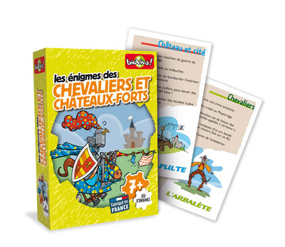Small enigme chevaliers3d cartes